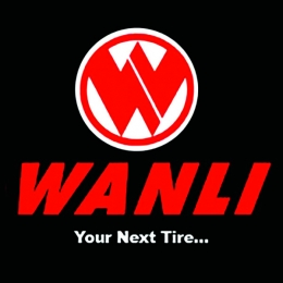 wanlilogo